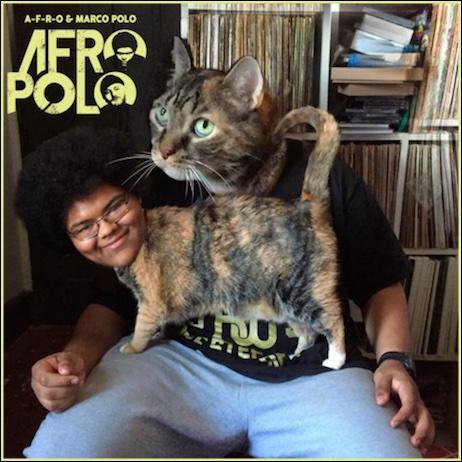 AfroPolo
